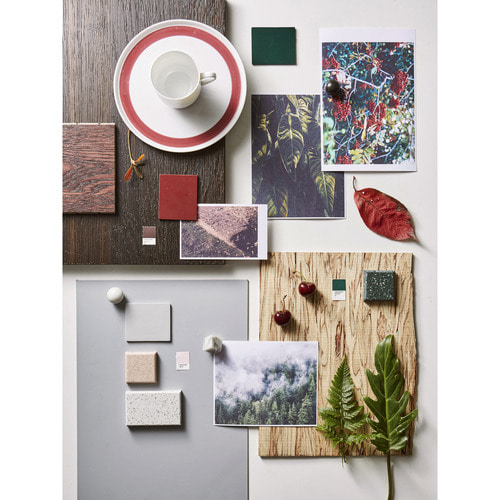 FOREST IMAGE BOARD